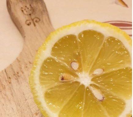Piantare semi di limone: la guida passo per passo